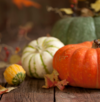 5 fall recipes with pumpkin you should try